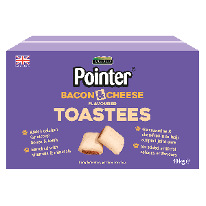 Pointer Bacon & Cheese Flavoured Toastees Dog Treats